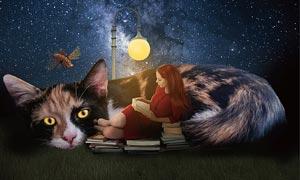创意的猫咪和女孩场景PS教程素材