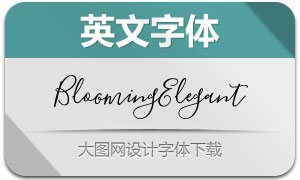 BloomingElegant系列6款英文字体
