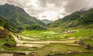 山间美丽的梯田和稻田摄影图片