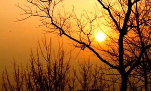 冬季野外日落美景摄影图片