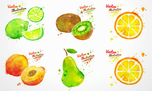 水彩墨迹喷溅蔬菜水果矢量素材集V1