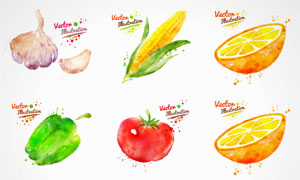 水彩墨迹喷溅蔬菜水果矢量素材集V3
