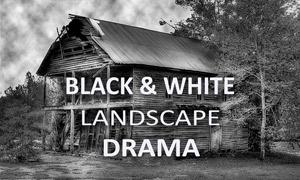 10款风景照片黑白艺术效果LR预设