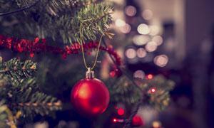 挂在树枝上的吊球特写摄影高清图片