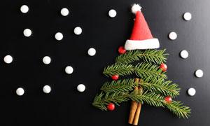 戴着帽子的圣诞树创意摄影高清图片