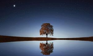 星空圆月与水中树创意摄影高清图片