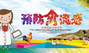 预防禽流感公益宣传海报设计PSD素材