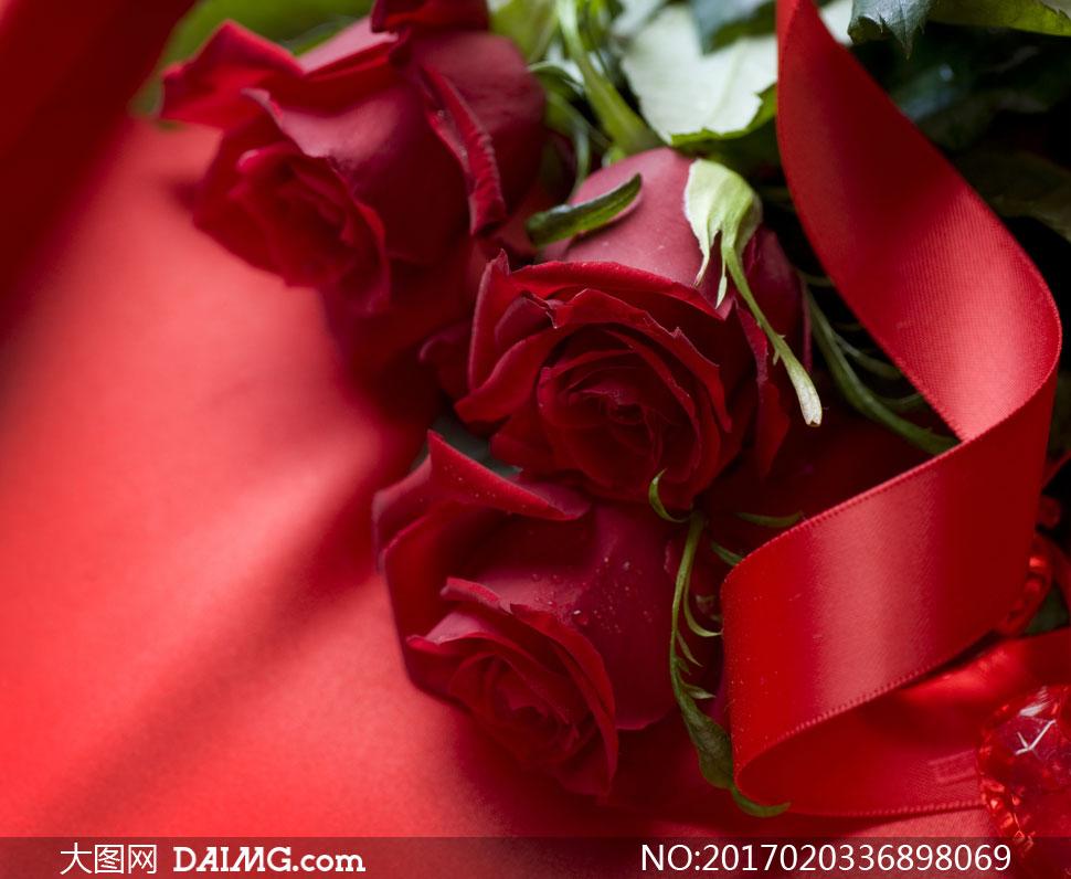 大红色丝带与玫瑰花朵摄影高清图片