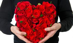 放在胸前的心形玫瑰花摄影高清图片