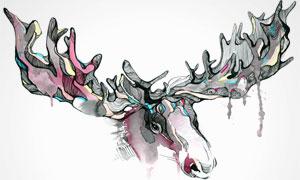 水彩墨迹元素鹿首绘画创意高清图片