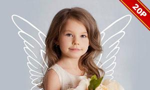 黑白款天使翅膀图层叠加高清图片V1
