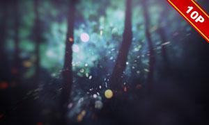 梦幻光斑元素逆光背景创意高清图片