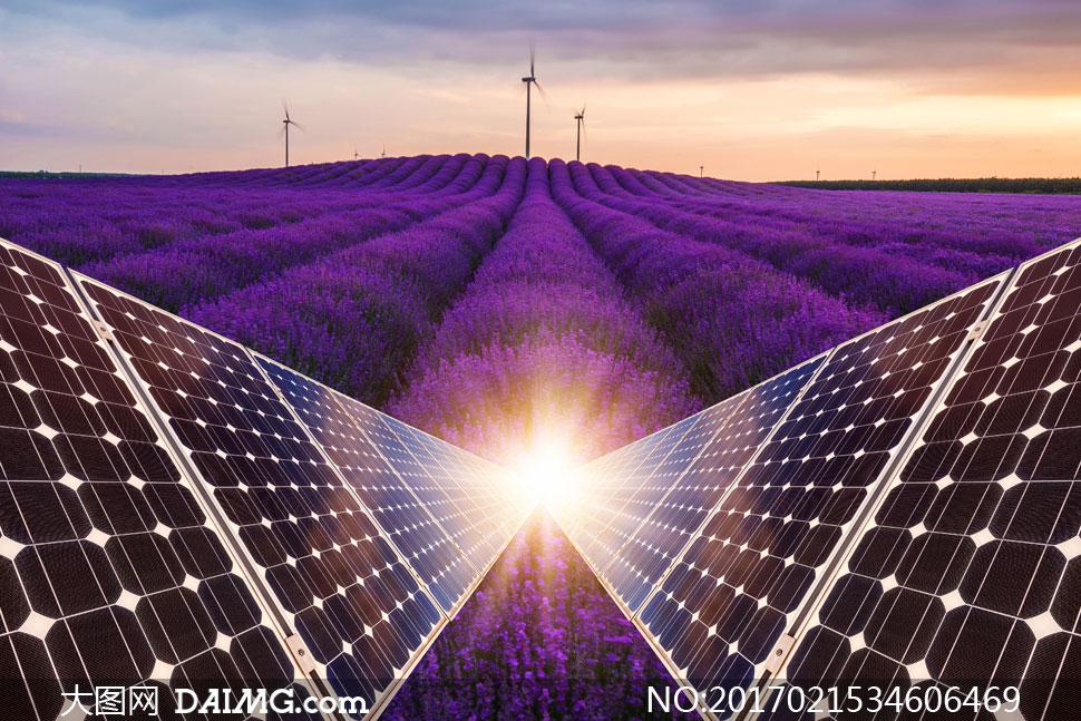 键 词: 高清图片素材大图摄影自然风景风光能源薰衣草紫色光效太阳能