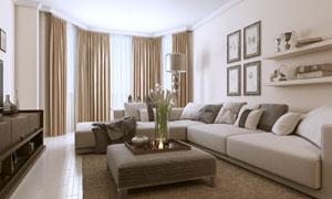 客厅装饰画插花与沙发摄影高清图片