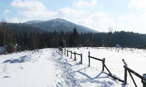 蓝天白云与雪地树林等摄影高清图片