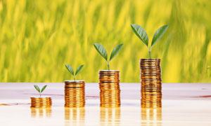 生长出新芽的硬币创意设计高清图片