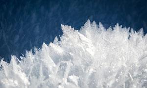 寒冷条件下的冰晶特写摄影高清图片