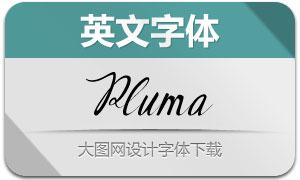 Pluma-Regular(英文字体)