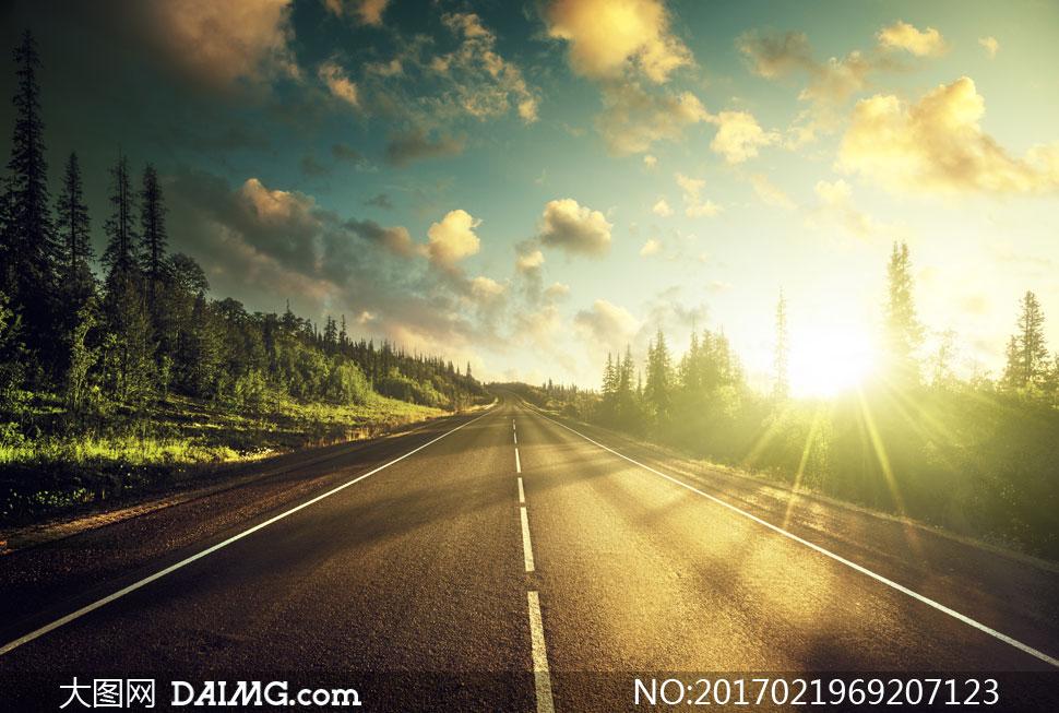 蓝天云彩云层多云云朵树木树林树丛道路标线公路光线逆光耀眼路边路旁