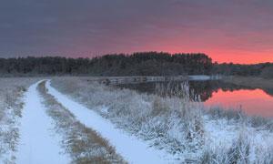 落满了积雪的湖畔小路风景高清图片