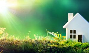 草地上的白色房子缩微模型高清图片