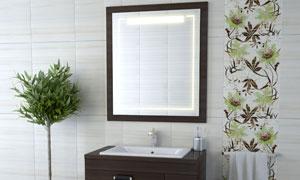 浴室柜毛巾架与镜子等摄影高清图片