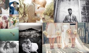 35款婚礼随拍照片后期调色LR预设V1