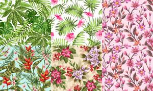 无缝效果花朵图案背景矢量素材集V5