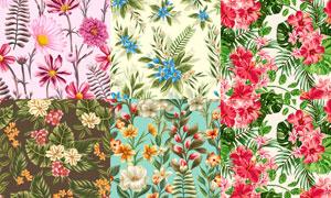 无缝效果花朵图案背景矢量素材集V6