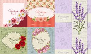 边框与玫瑰花薰衣草等创意矢量素材