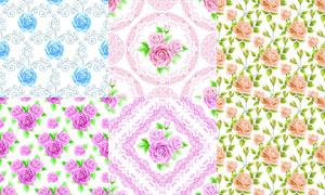 花纹图案与花朵元素背景矢量素材V4