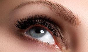 明亮眼睛与眉形塑造等主题高清图片