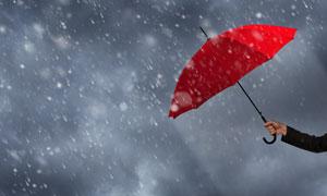 滂沱大雨中的红色雨伞创意高清图片