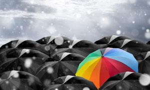 一堆黑伞中的缤纷雨伞创意高清图片