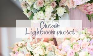 花朵照片柔美暖色艺术效果LR预设