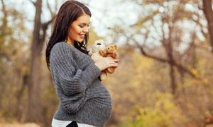 手拿着玩具小熊的孕妇摄影高清图片