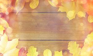 木板上的秋天树叶边框摄影高清图片