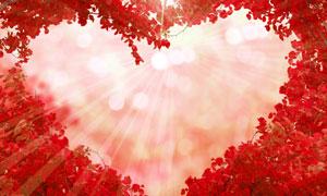 红叶树组成的心形边框创意高清图片