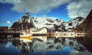 湖光山色与飞翔的海鸟摄影高清图片