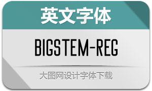 BigStem-Regular(英文字体)