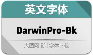 DarwinPro-Black(英文字体)