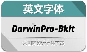 DarwinPro-BlackIt(英文字体)