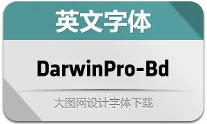 DarwinPro-Bold(英文字体)