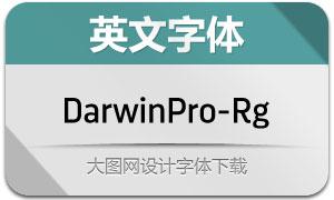 DarwinPro-Regular(英文字体)