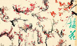 中国传统梅花和兰花PSD分层素材