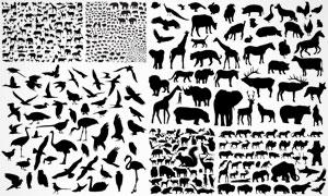 种类繁多的动物黑白剪影矢量素材V1