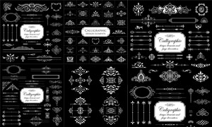 黑白花纹图案与分割线矢量素材集V3