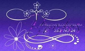 线条装饰和花朵装饰PS笔刷
