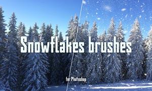 高清晰暴风雪和大雪PS笔刷