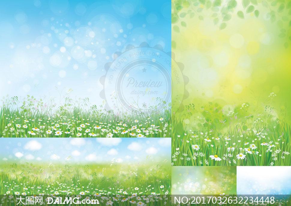 素材自然风景蓝天白云云朵鲜花花朵菊花朦胧唯美模糊光斑叶子树叶春天